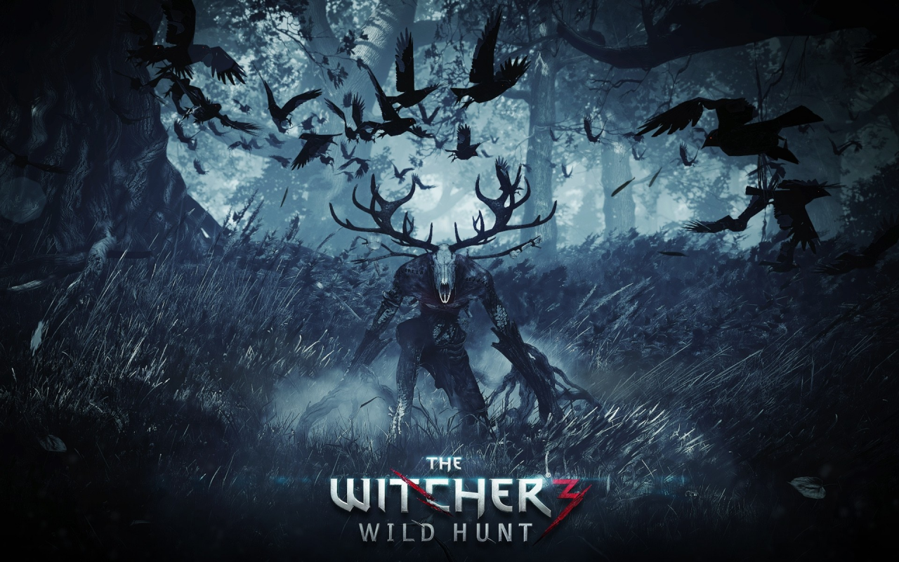 The Witcher 3 - Wild Hunt - Découverte en vidéo - Session 2