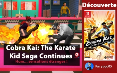 Test vidéo [DECOUVERTE] Cobra Kai: The Karate Kid Saga Continues sur SWITCH