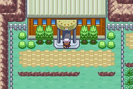 Pokemon Vert Feuille