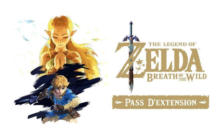 Eneba : Les promo du jour ! Switch Online, Pass extension de Zelda, Ori and the Blind Forest...