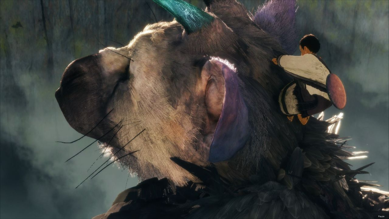 Bon Plan PS4 : The Last Guardian à 19,99 euros