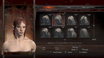 test-multi-dragon-dogma-dark-arisen