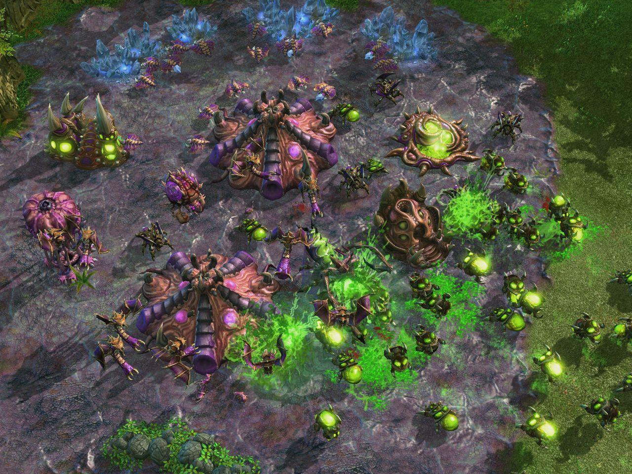 Starcraft 2 : l'edition collector