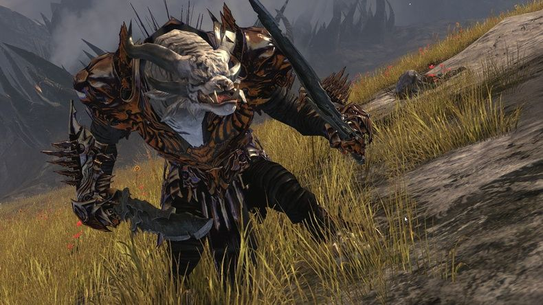 Guild Wars 2 : Focus sur les Warriors
