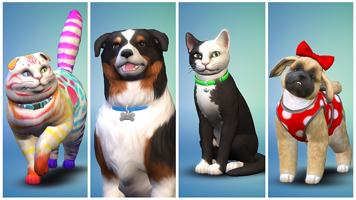 TS4_EP04_OFFICIAL_SCREEN_01_003_1080